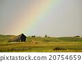 Rural Saskatchewan 20754659