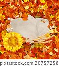 autumn, sunflower, design 20757258