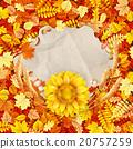 autumn, sunflower, design 20757259