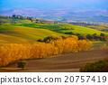 tuscany, farmland, agriculture 20757419