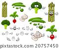 蔬菜 向量 向量圖 20757450