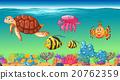 游泳 海 下面 20762359