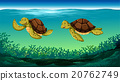 Two turtles swimming under the sea 20762749