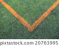 soccer field grass 20763995
