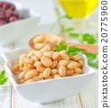 white bean 20775960