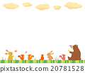 animal, animals, bear 20781528