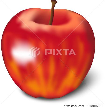 Apple 20800262