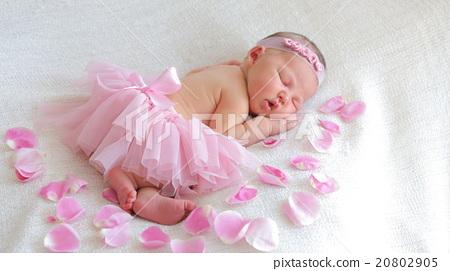 cute newborn baby girl sleeping stock photo 20802905 pixta