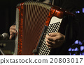 Accordion player 20803017