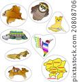 地図の動物 一都六県 台紙版 20808706