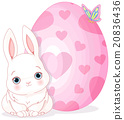 Easter Bunny and Egg 20836436