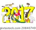 鳥兒 鳥 白底 20840749