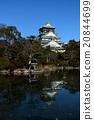 城堡 大阪城 城堡塔楼 20844699
