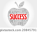 Success apple word cloud 20845791
