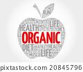 Organic apple word cloud 20845796