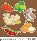 cute cartoon Vegetable set 20849301