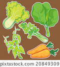 cute Vegetable set 20849309