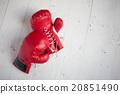 包裝 拳擊 拳擊手套 20851490