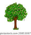 樹木 樹 春天 20853097