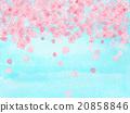 Flower blossoms Sakuraguki Sakura Sakura watercolor petal Heart shaped pattern Landscape Ohanami Biyori Aozora April spring background 20858846