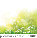 Vector nature background. 20863805
