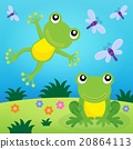 Frog thematic image 2 20864113