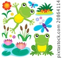 Frog thematic set 1 20864114