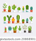 Cactus flat style. Vector illustration. 20868901