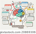 The Human Brain Diagram Doodles Icons Set. 20869306
