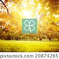 Green Clover Leaf Environmental Inspiration Concept 20874265