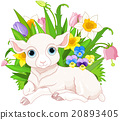 Easter Sheep 20893405