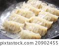 เกี๊ยว,อาหารจีน,กระทะทอด 20902455