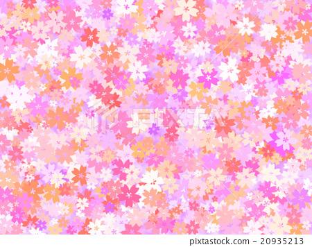Cherry Blossoms 20935213