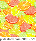 Citrus seamless background 20939721