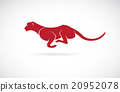 Vector image of an cheetah on white background 20952078