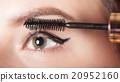 makeup, brush, woman 20952160