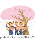 觀賞櫻花 櫻花 櫻 20967725