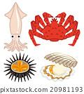 海鲜 海产品 一套 20981193