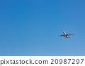 飛 蒼蠅 飛翔 20987297