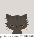 Angry cat cartoon. Cute grumpy cat, vector. 20987348