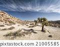 clouds, desert, sky 21005585