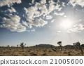 clouds, desert, sky 21005600