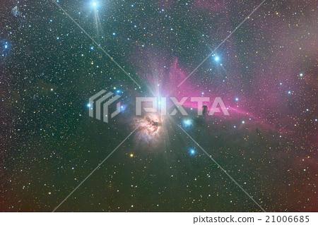 Burning tree nebula and horseshoe nebula 21006685