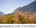 beautiful Landscape of Hunza Valley in Autumn 21014662