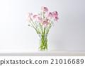 鮮花 花瓶 毛茛屬植物 21016689
