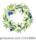 Olive wreath watercolor.  21018866