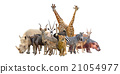 group of africa animals 21054977