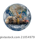 group of africa animal with planet earth 21054979