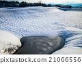 雪景 早春 锦鲤 21066556