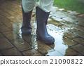 rain, rainy, rubber 21090822
